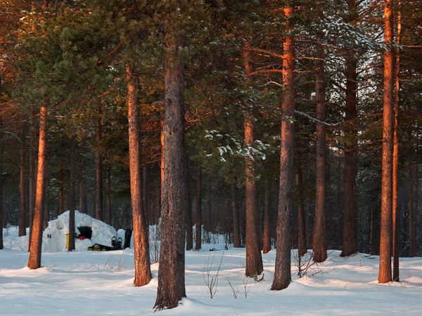 Morning light at Camp Quinzhee - Ice Raven - Sub Zero Adventure - Copyright Gary Waidson, All rights reserved.